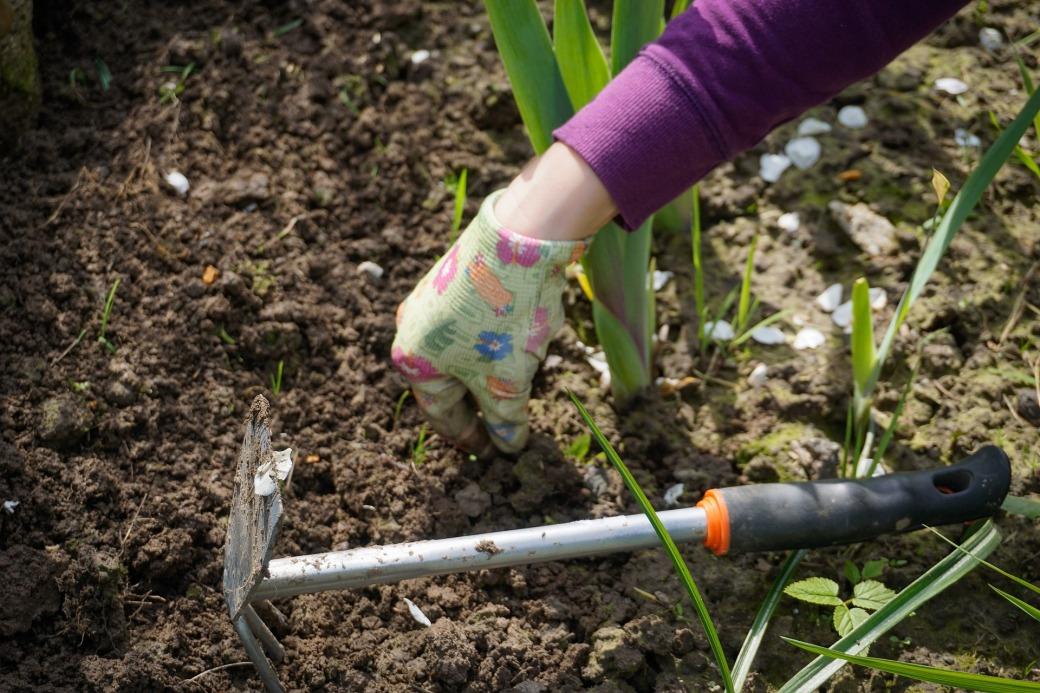 work-in-the-garden-2432111_1920